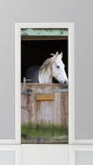 360x1000x0_productfoto-paard