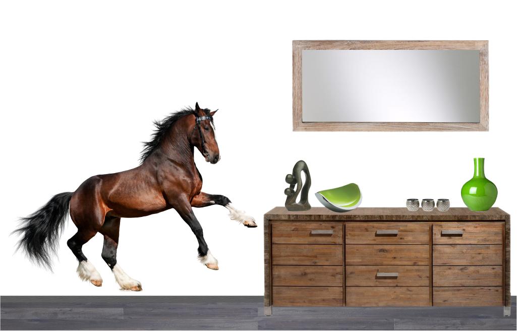 Paarden Sticker Muur.Muursticker Paard Muursticker Dieren