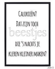 Poster_calorie___54f2dd2035d88.jpg
