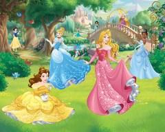 Posterbehang prinsessen